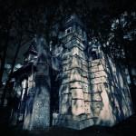 18074985-chateau-medieval-mystere-dans-la-foret-la-nuit
