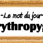 Erythropyge